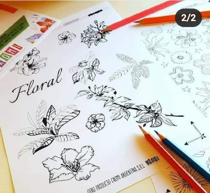 Laminas P/colorear A4 De 150gr X12u - Flores